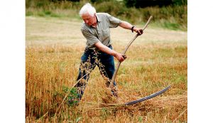 scythe farm equipment