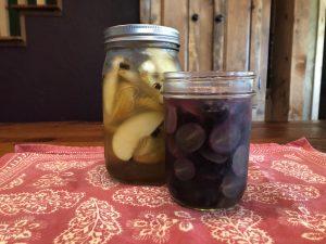 fruit lacto-fermentation