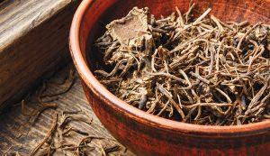 valerian rhizome herbal sleep remedies