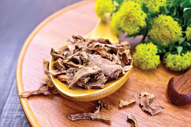 rhodiola herbs stress relief