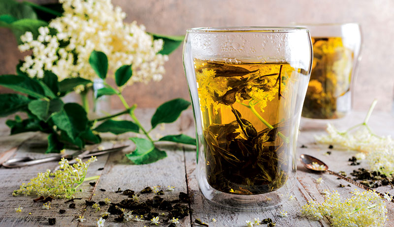 elder-blossom tea herbs cold flu virus remedies
