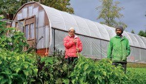 high tunnel crops growing gardening