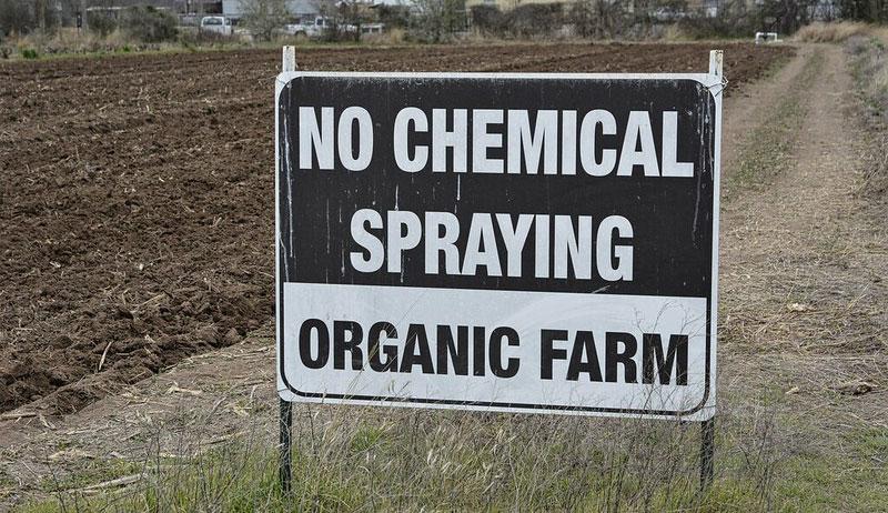 organic certification farming