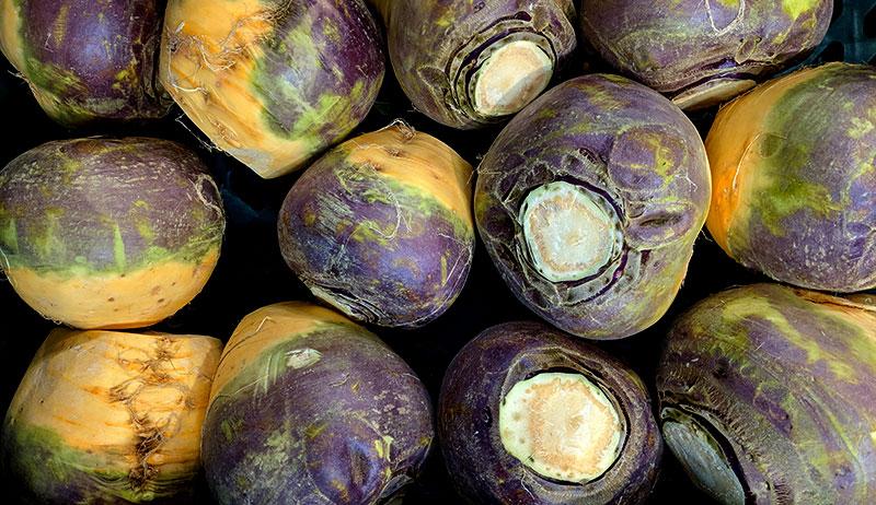 turnips turnip lanterns