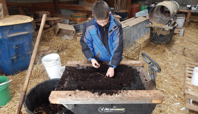 an example of a worm compost bin