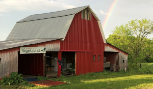 farm stand stop honor system