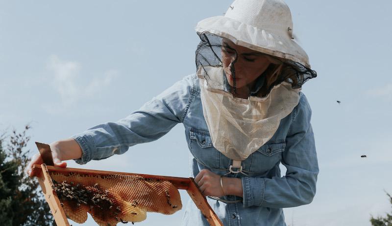 Texas Beesworks Erika Thompson