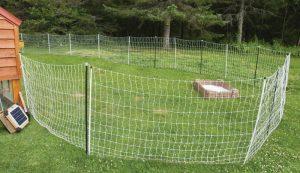 chicken coop design fencing