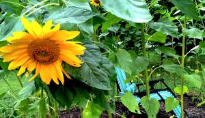 flower fort