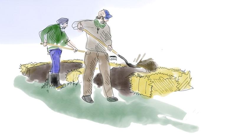 hügelkultur bare-root nursery bed