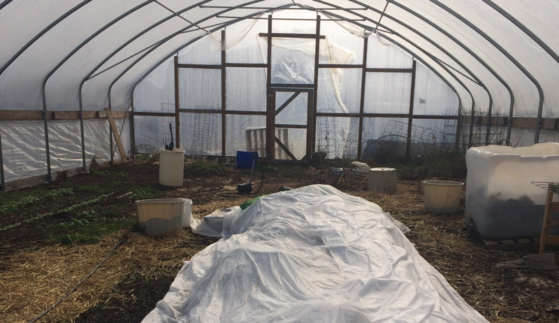 high tunnel irrigation greenhouse watering