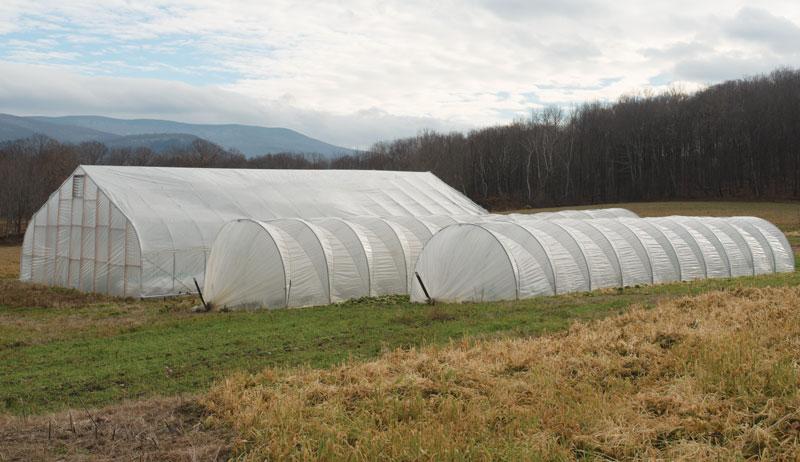 tunnels leasing farmland