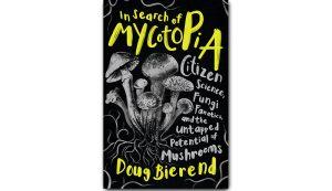 fungal fungus mycotopia