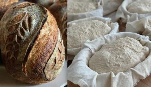 sourdough bread baking dough starter