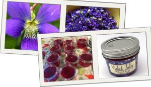 violet jelly recipe