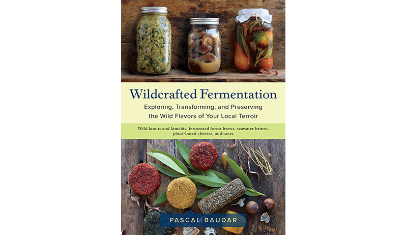 wildcrafted fermentation book cover