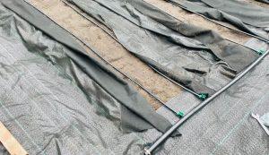 first-year garden zipper beds