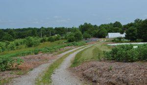 solar cedar ring farm kentucky
