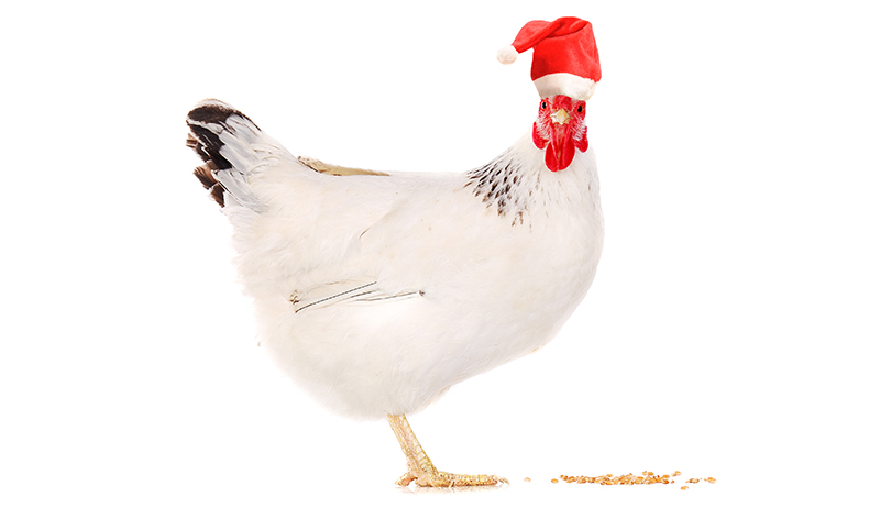 poultry-related gifts