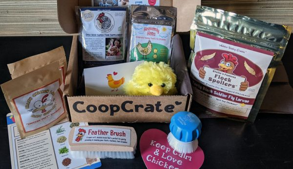 Spoil Your Chickens & Yourself With CoopCrate