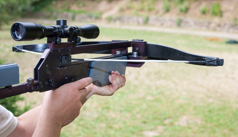 crossbow hunting hunter crossbows