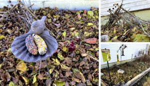sustainable garden cleanup