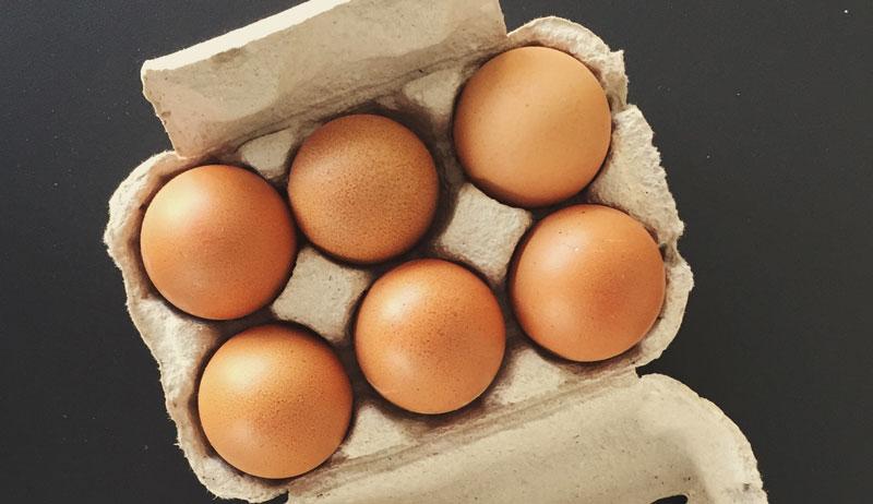 egg eggs carton cartons