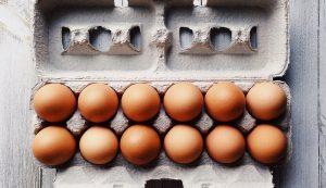 eggs carton egg business coronavirus pandemic COVID-19