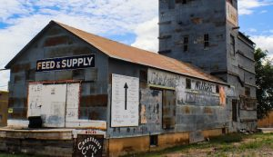 farm supply store feed chickens chicken