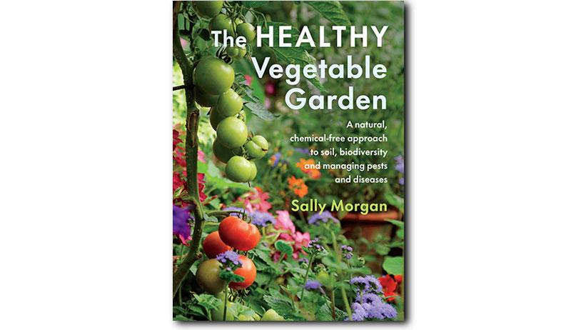 healthy vegetable garden