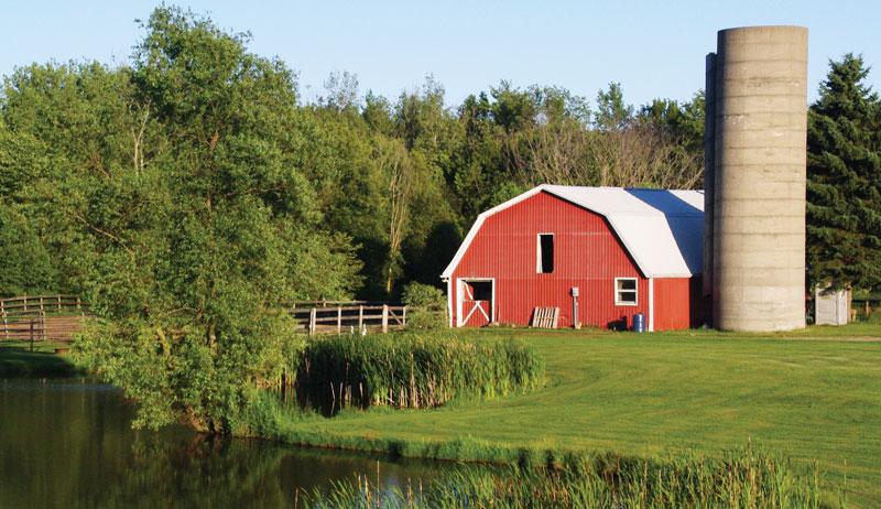 build a homestead barn
