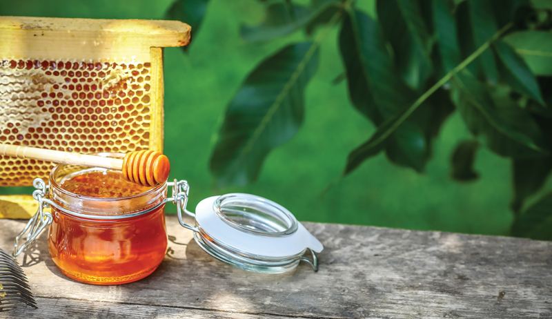 uses for honey use used