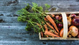 fall crop harvest tips