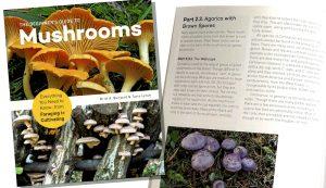 The Beginners Guide to Mushrooms guidebook