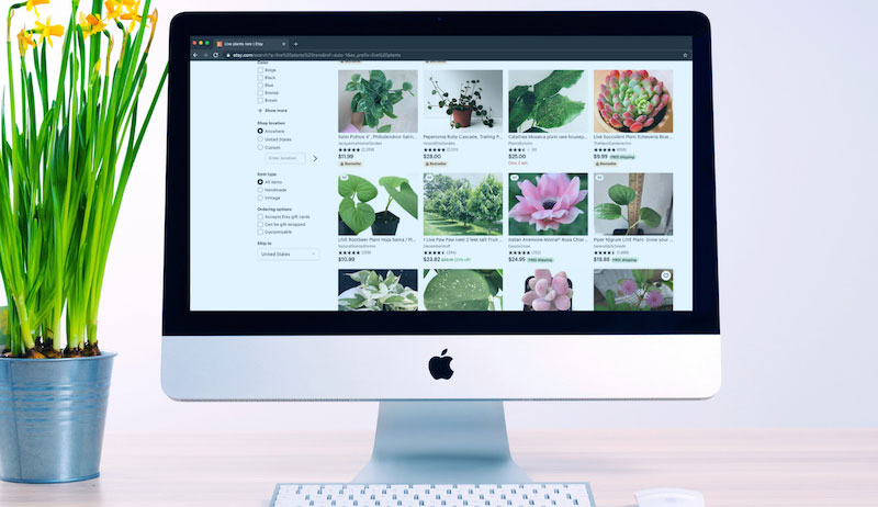 online plant sales sell starts etsy