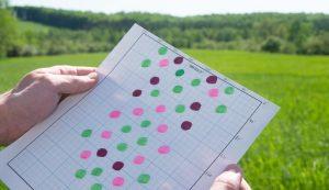 orchard planning