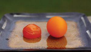 eggs egg experiment experiments egg-spiriments