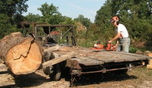 portable sawmill trailer parbuckle loading