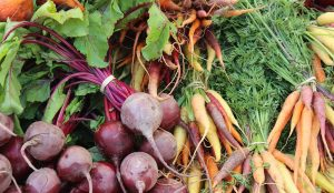 winter cold food security produce