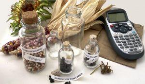 seed storage
