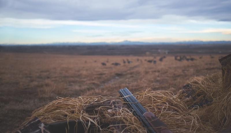 farm gun guns