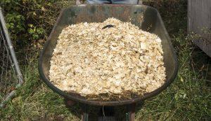deep-litter chicken coop method chickens
