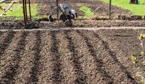 rototiller rototillers garden acre acreage