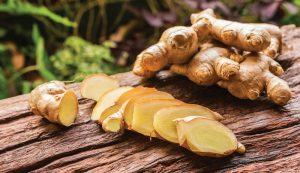 medicinal herb herbs ginger