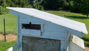 skillion coop roof chicken chickens