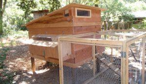 skillion coop roof