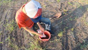 soil test testing