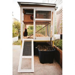 Check Out These 5 Funky Chicken Coop Designs!