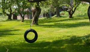 build a simple tire swing
