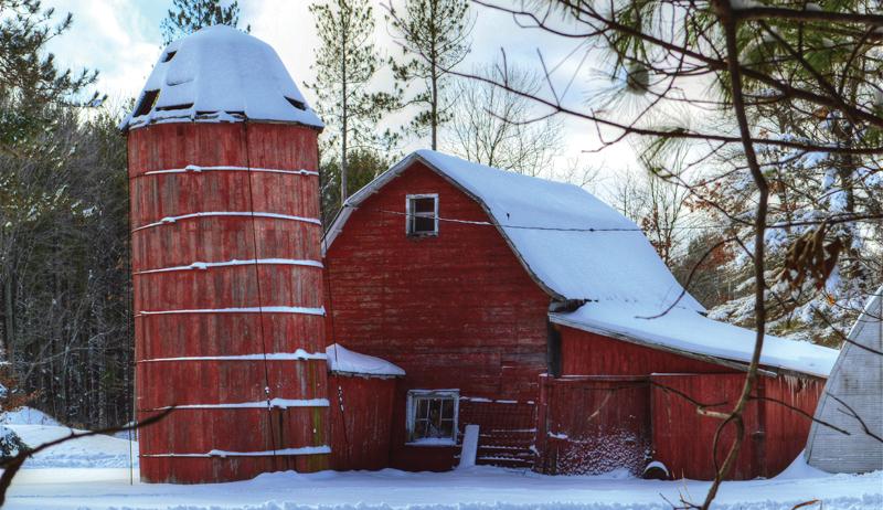 wood silos silos